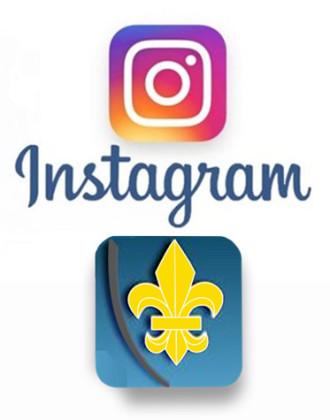 fig-instagram