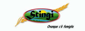 Logo-Stingi